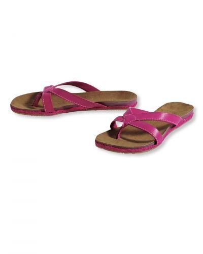 Till dam från Bonaparte, en rosa sko.
