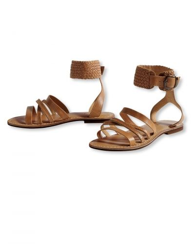 Till dam från Bonaparte, en brun sko.