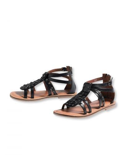 Till dam från Bonaparte, en svart sko.