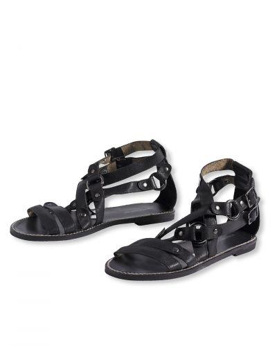 Bonaparte sko till dam.