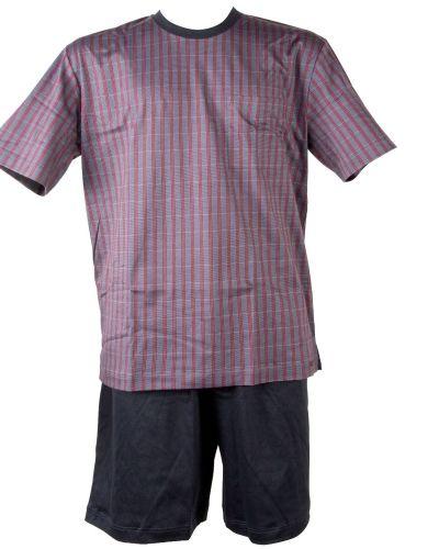 Calida Calida Short Pyjama Iwan