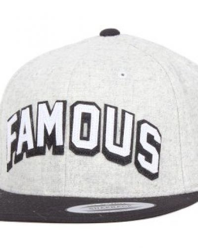 Famous - Tastemaker Grey/Black Snapback Famous keps till unisex/Ospec..
