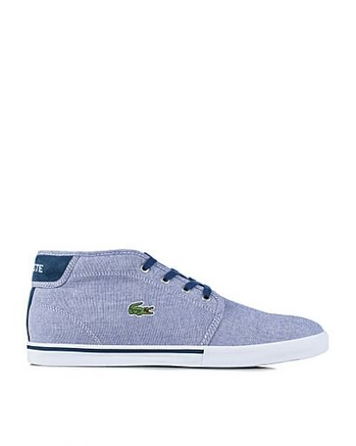 Lacoste Ampthill CLL