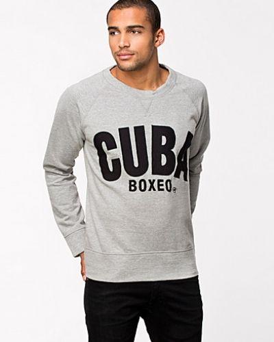Metallicfärgad sweatshirts från Mouli till killar.