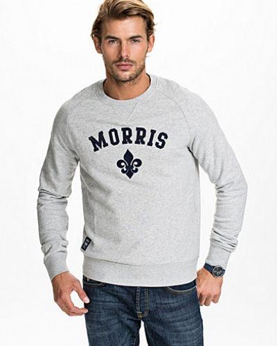 morris sweatshirt herr