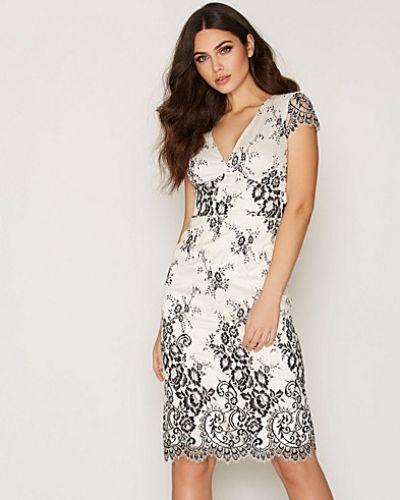 Klänning SS V Neck Lace Dress från French Connection
